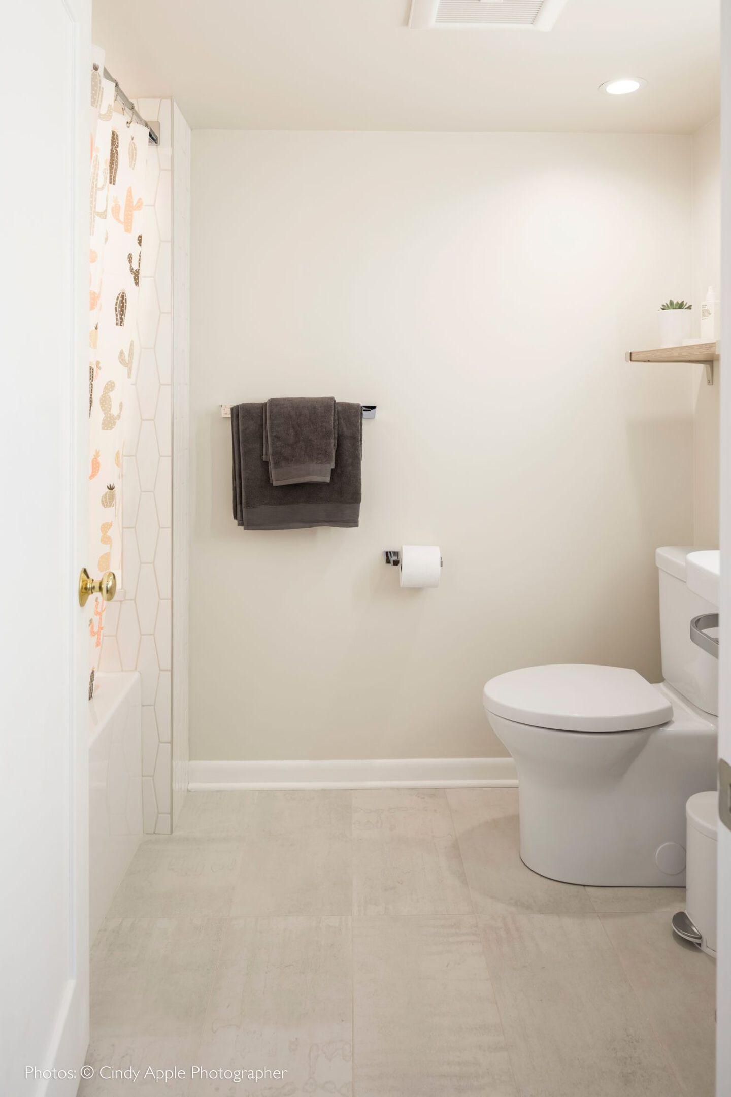 Cat Schmidt Bathroom